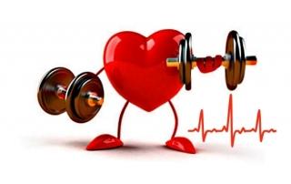 Частота сердечных сокращений ЧСС до и после тренировки
