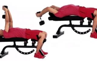 Упражнение пуловер с гантелью лежа фото
