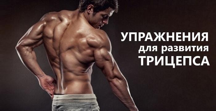 Лучшие упражнения для развития трицепса