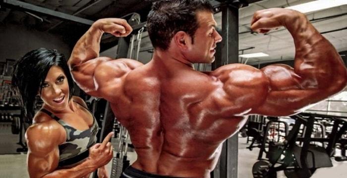 Программа на массу спины