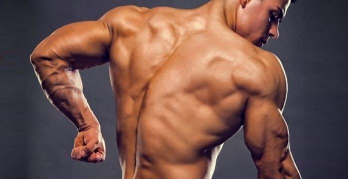 Противодействие мышц на тренировках